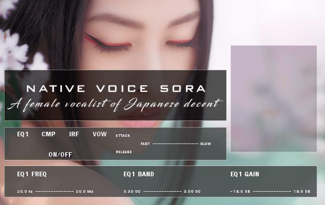 sora_new