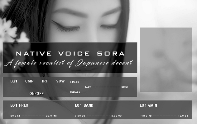 sora_new_bw