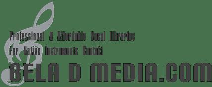 bdm_2020_logo_50